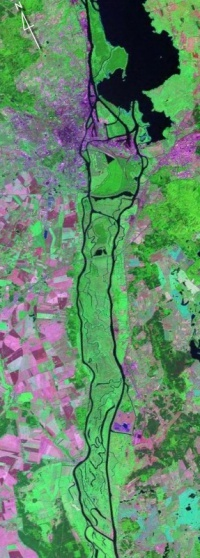 Miedzyodrze - satellite view.jpg